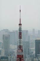 High section of Tokyo Tower in city against sky 11100065449| 写真素材・ストックフォト・画像・イラスト素材|アマナイメージズ