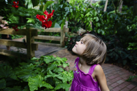 Girl making a face while looking at hibiscus in garden 11100067883| 写真素材・ストックフォト・画像・イラスト素材|アマナイメージズ