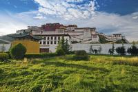 Potala Palace, Dalai Llama's winter palace, Lhasa, Tibet 11102000011| 写真素材・ストックフォト・画像・イラスト素材|アマナイメージズ