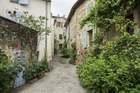 Alley with plants, Grignan, Departement Drome 11102000082| 写真素材・ストックフォト・画像・イラスト素材|アマナイメージズ