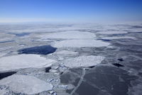 Aerial view, pack ice, Magdalen Islands, Gulf of Saint