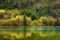 Five Flower Lake in autumnal environment, Jiuzhaigou 11102000553| 写真素材・ストックフォト・画像・イラスト素材|アマナイメージズ