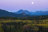 Autumnal landscape, Denali National Park, Alaska, United