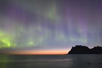 Northern Lights on Utakleiv Beach, Vestvagoy, Lofoten 11102000585| 写真素材・ストックフォト・画像・イラスト素材|アマナイメージズ