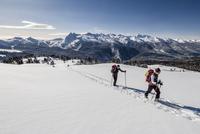 Ski touring the ascent to Cima Bocche on Passo Valles 11102000981| 写真素材・ストックフォト・画像・イラスト素材|アマナイメージズ