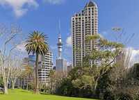 Sky Tower from Albert Park, Auckland, North Island, New 11102001553| 写真素材・ストックフォト・画像・イラスト素材|アマナイメージズ