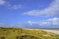 Beach with high, overgrown dunes, Juist, East Frisian 11102001556| 写真素材・ストックフォト・画像・イラスト素材|アマナイメージズ