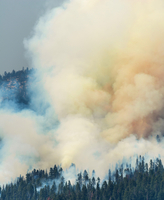 Clouds of smoke of a wildfire, Yosemite National Park