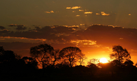 Sunset in the Pantanal, Mato Grosso do Sul, Brazil, South