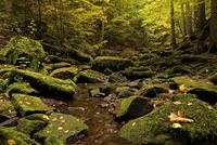 Landscape in Monbachtal in Bad Liebenzell, Black Forest 11102001754  写真素材・ストックフォト・画像・イラスト素材 アマナイメージズ