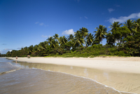 Beach Four, Quarta Praia, Morro de Sao Paulo, Cairu, Bahia
