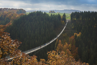 Suspension bridge over Geierlay Morsdorfer Bachtal 11102001854  写真素材・ストックフォト・画像・イラスト素材 アマナイメージズ