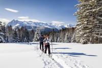 Ski tourers ascending the Cima Bocche at Passo Valles 11102001998| 写真素材・ストックフォト・画像・イラスト素材|アマナイメージズ