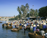Fishing village people collecting the morning catch from fishing boat fleet, Mui Ne, south-central coast, Vietnam, Indochina, So 11104000971| 写真素材・ストックフォト・画像・イラスト素材|アマナイメージズ