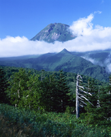 Mount Rauso-dake with low cloud, Shiretoko Peninsula, Hokkaido, Japan