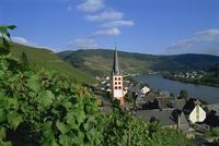 Zell-merl, Mosel Valley, Rheinland-Pfalz