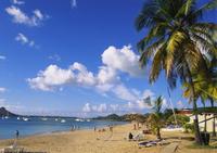 Reduit Beach, Rodney Bay, St Lucia, Caribbean 11104003524| 写真素材・ストックフォト・画像・イラスト素材|アマナイメージズ