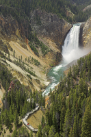 Lower Falls on the Yellowstone River, Grand Canyon of the Yellowstone, from Lookout Point, North Rim, Yellowstone National Park 11104006067| 写真素材・ストックフォト・画像・イラスト素材|アマナイメージズ