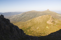 View of Mount Pelion East, 1433m, from Mount Ossa, 1617m, Tasmania's highest mountain on the Overland Track, Cradle Mountain Lak