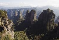 Karst limestone rock formations at Zhangjiajie Forest Park, Wulingyuan Scenic Area, Hunan Province
