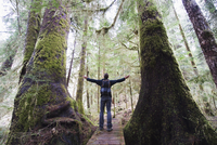 A hiker in the old growth forest at Carmanah Walbran Provincial Park, Vancouver Island