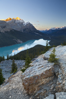 Peyto Lake at sunrise, Banff National Park, Rocky Mountains, Alberta