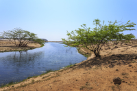Tranquil waters of Khor Rori (Rouri), Land of Frankincense , near Salalah, Dhofar Region, Oman, Middle East