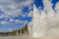 Lone observer watches Grand Geyser erupt, Upper Geyser Basin, Yellowstone National Park 11104014190| 写真素材・ストックフォト・画像・イラスト素材|アマナイメージズ