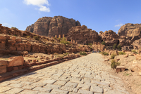 Colonnaded Street, City of Petra ruins, Petra, Jordan, Middle East 11104014422| 写真素材・ストックフォト・画像・イラスト素材|アマナイメージズ