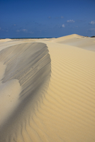 Sand dunes on the south coast of the island of Socotra, UNESCO World Heritatge Site, Yemen, Middle East