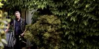 Mature man in garden 11107001842| 写真素材・ストックフォト・画像・イラスト素材|アマナイメージズ