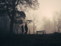 Silhouette of people by bench in Loch Lomond, Scotland