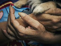 Woman's hands with dog paw