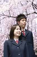 桜の木と制服を着た少年少女