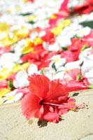 花を浮かべたスパ
