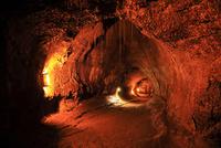 ハワイ島キラウエア火山 サーストン・ラバ・チューブ 28021000520| 写真素材・ストックフォト・画像・イラスト素材|アマナイメージズ