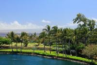 ハワイ島,ワイコロア 28021000679| 写真素材・ストックフォト・画像・イラスト素材|アマナイメージズ