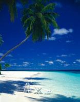 モルジブのビーチ 28029001231| 写真素材・ストックフォト・画像・イラスト素材|アマナイメージズ