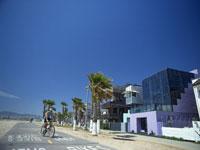 海岸通り 28029001276| 写真素材・ストックフォト・画像・イラスト素材|アマナイメージズ