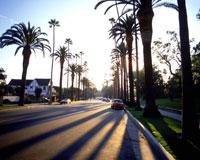 ロサンゼルスの道路