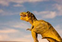恐竜ティラノサウルスと空