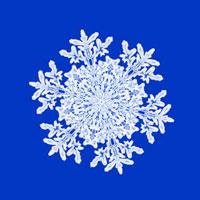 雪の結晶 28144005744| 写真素材・ストックフォト・画像・イラスト素材|アマナイメージズ