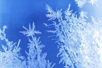 ガラスについた雪の結晶