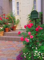 玄関 28144067013  写真素材・ストックフォト・画像・イラスト素材 アマナイメージズ