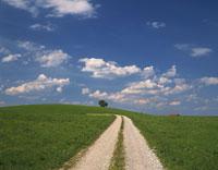 草原と道 28144070177  写真素材・ストックフォト・画像・イラスト素材 アマナイメージズ