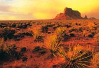 砂漠と岩山