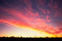 夕焼けに染まる雲 28144080222| 写真素材・ストックフォト・画像・イラスト素材|アマナイメージズ