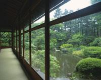 縁側から見た日本庭園 28144084736| 写真素材・ストックフォト・画像・イラスト素材|アマナイメージズ