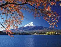 紅葉と富士山 28144089091| 写真素材・ストックフォト・画像・イラスト素材|アマナイメージズ