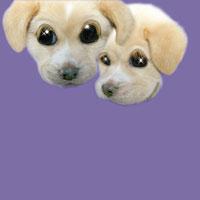 2匹の犬 CG
